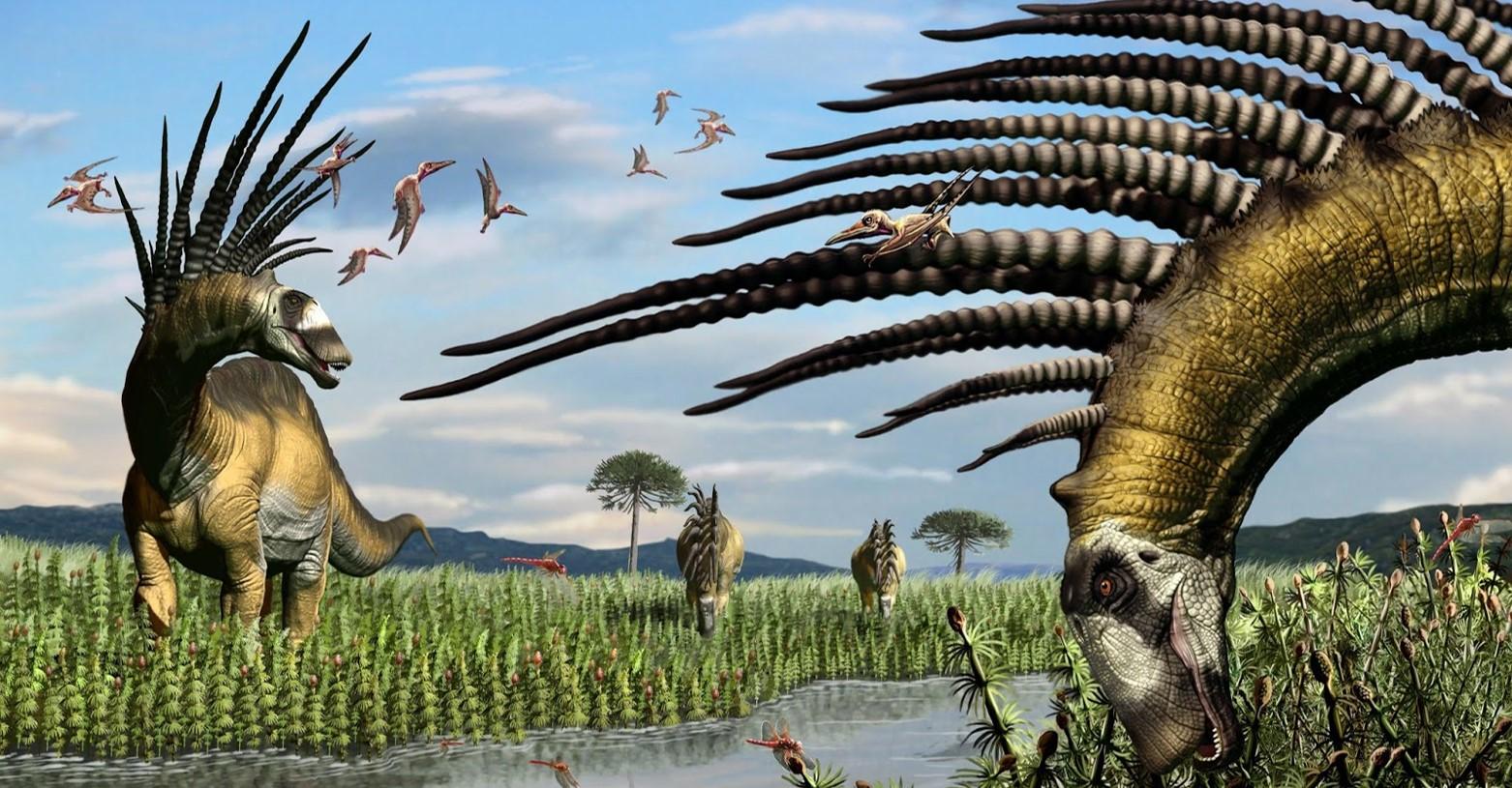 bajadasaurus_fb.jpg