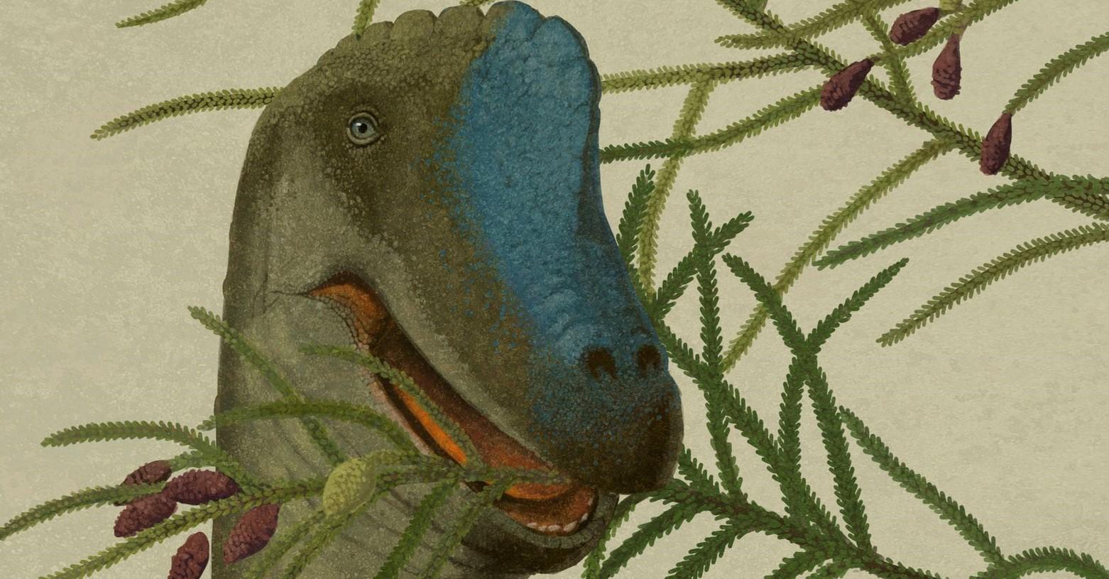 brachiosaurus_2020_fb.jpg