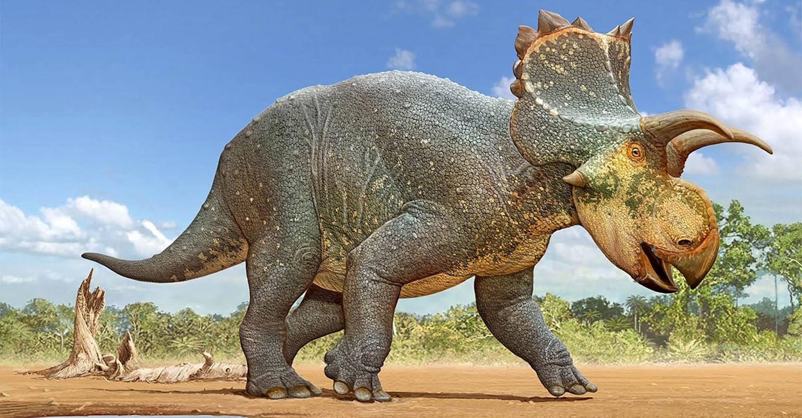 crittendenceratops_fb.jpg