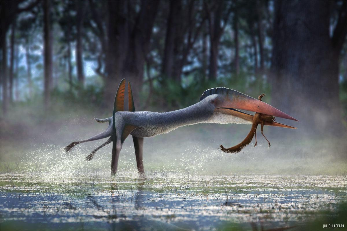 hatzegopteryx_julio_lacerda.jpg