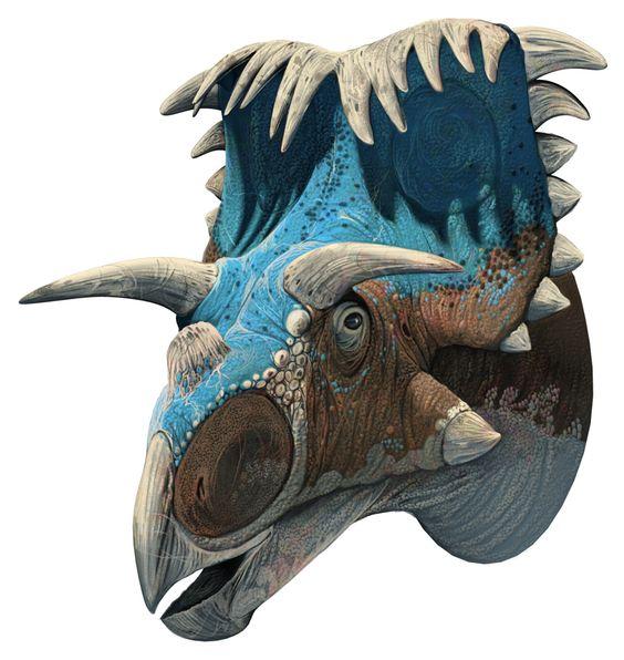 kosmoceratops-_roman_garcia_mora.jpg