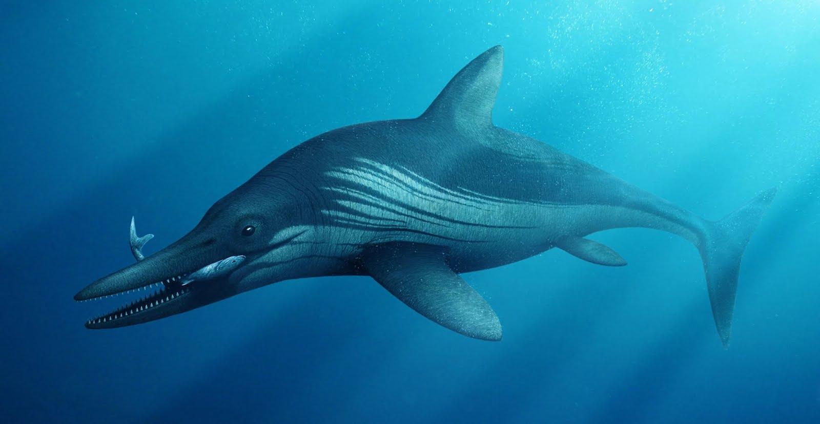 protoichthyosaurus_prostaxalis_bob_nicholls.jpg