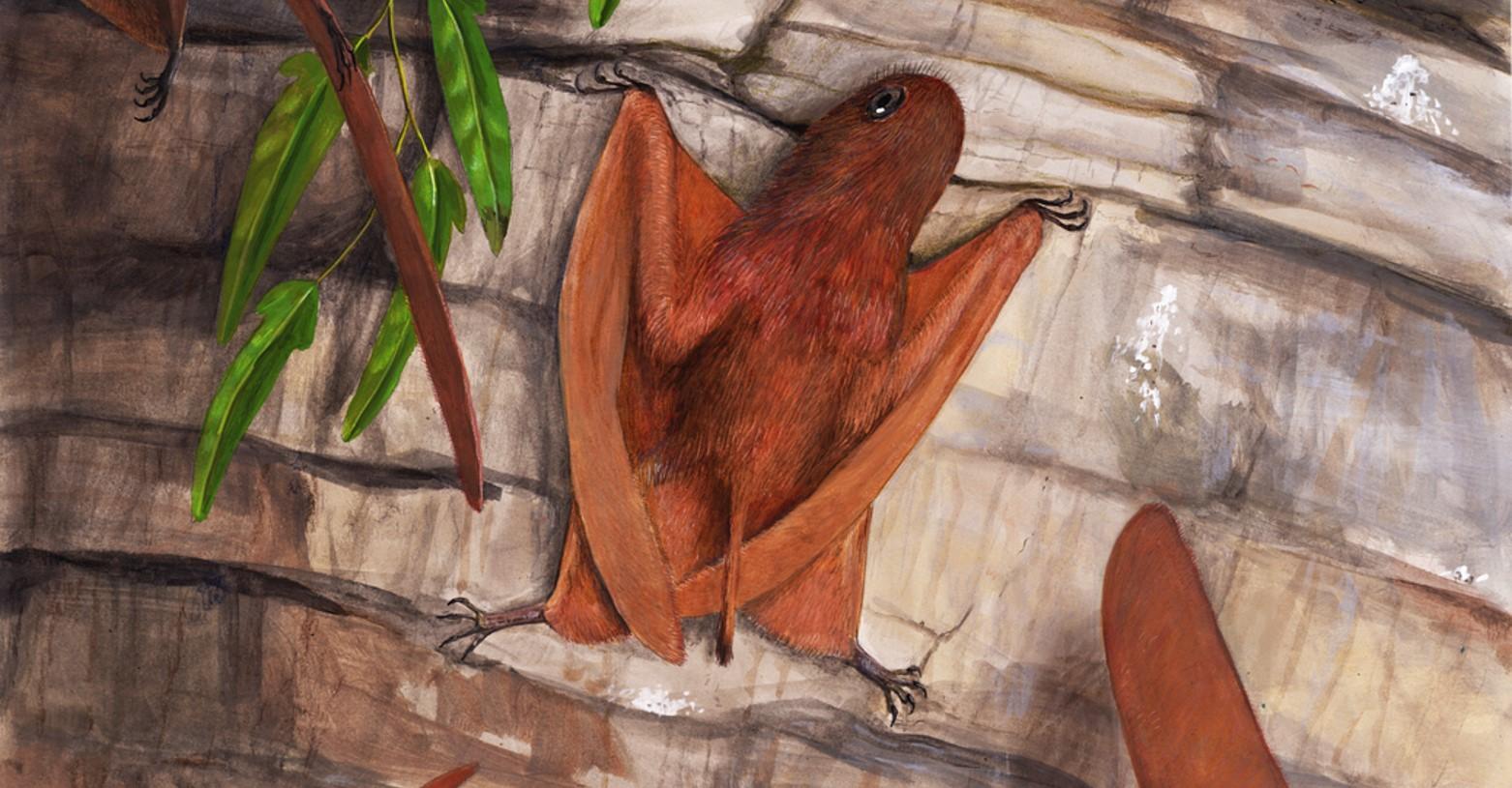 pteroszaurusz_kultakaro_fb.jpg