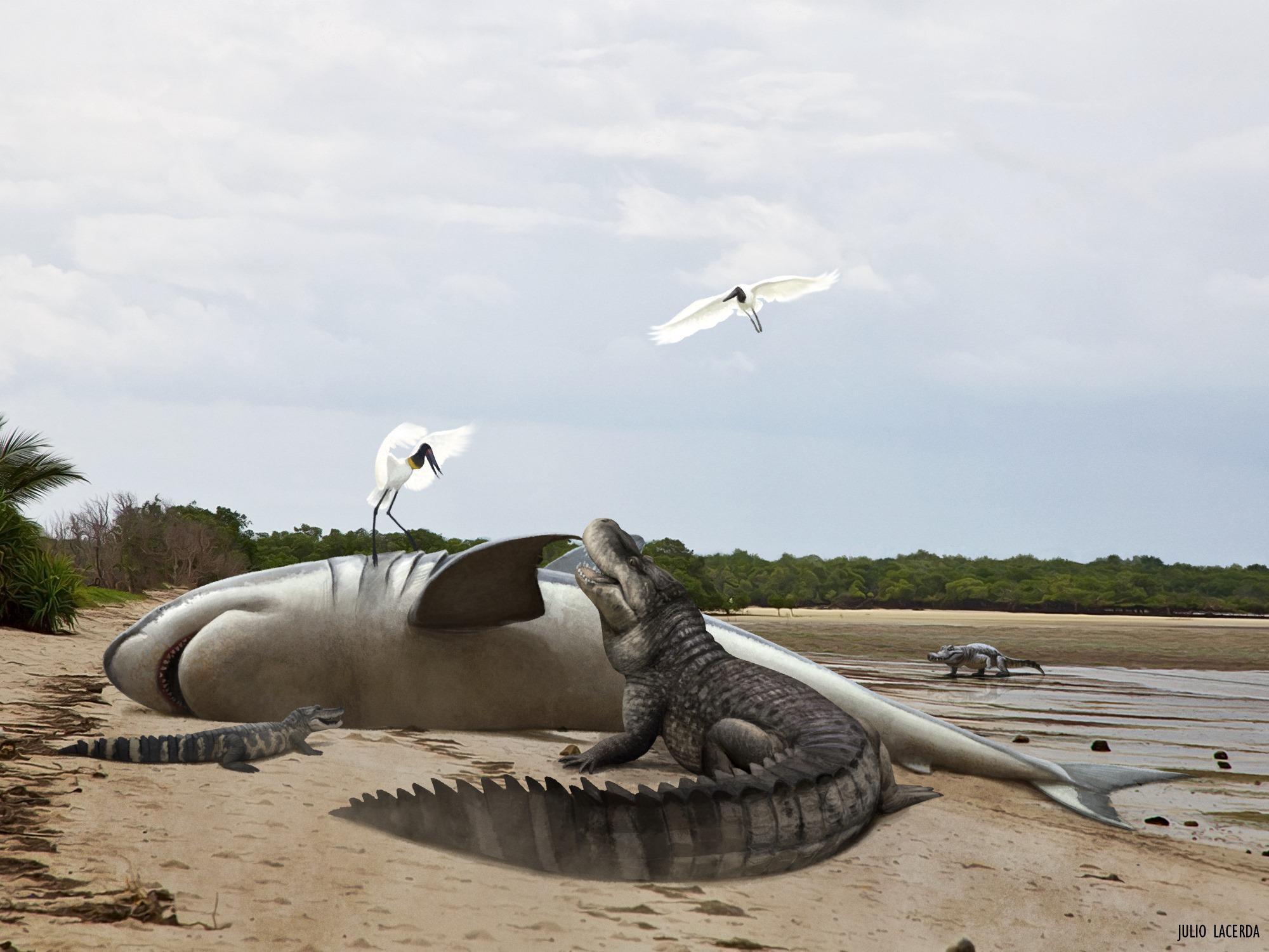 purussaurus_megalodon_julio_lacerda.jpg