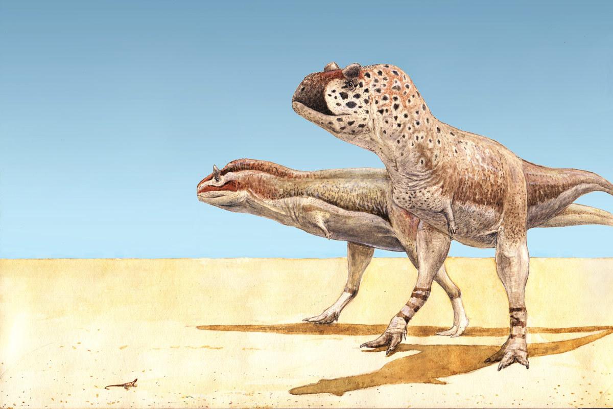 pycnonemosaurus_nevesi_joschua_knuppe.jpg