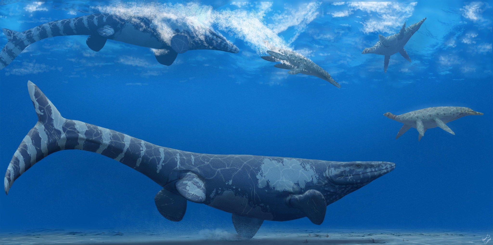 tylosaurus_pembinensis_trinacromerum_kirki_henry_sharpe.jpg