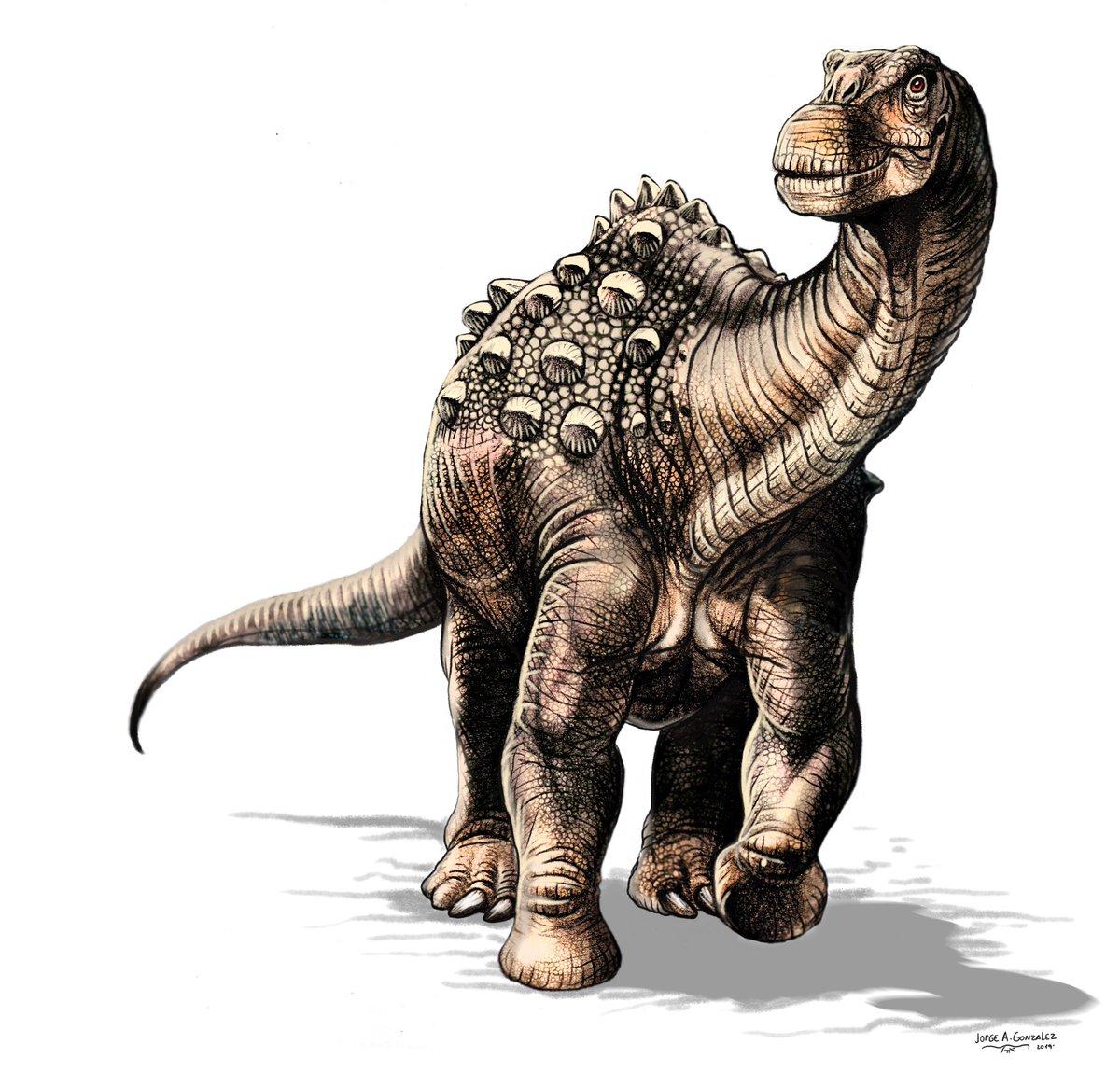 yamanasaurus_lojaensis_jorge_antonio_gonzalez.jpg