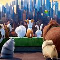Már az animációs állatok is agykurkászhoz járnak