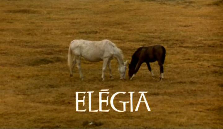 elegia1.jpg