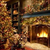 Kellemes karácsonyi ünnepeket !