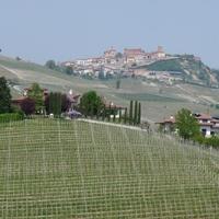 Giro d'Italia 12. etap - Risotto al Barolo