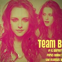 Új őrület: Team Bella