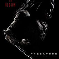 Az első Antal Nimród-féle Predators előzetes