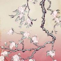 cseresznyefa- halál...