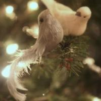karácsonyváró