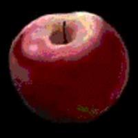 egy alma a tudás fájáról...
