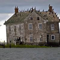 Sziget - Mette Jakobsen Minou szigete