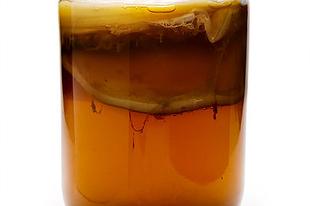 Kombucha, a halhatatlanság itala