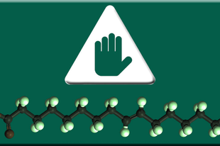 Kis zsírhatározó - Telítetlen zsírok I.