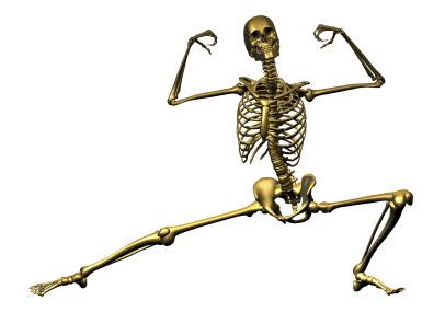 csont.jpg