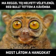 eds_meme.jpg