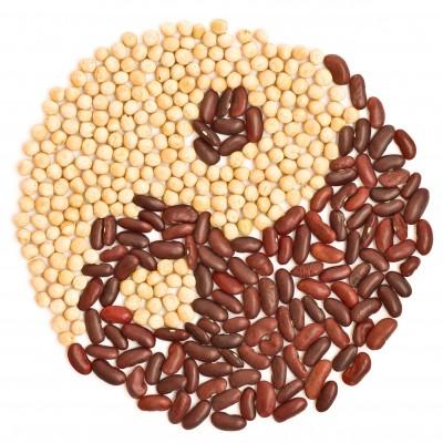 food-yin-yang.jpg
