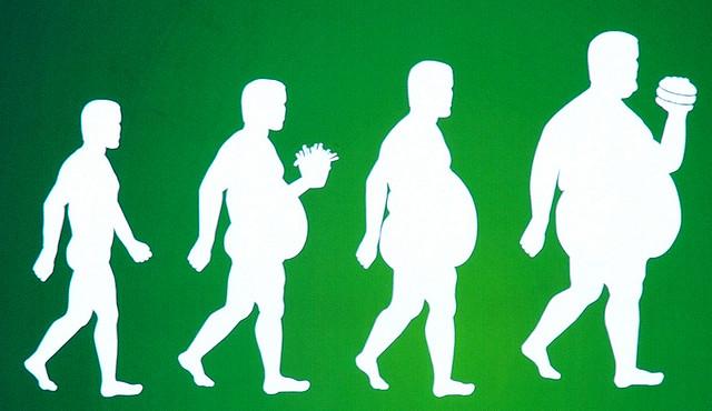obesity_evolution.jpg