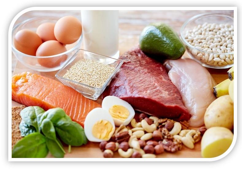 protein3.jpg