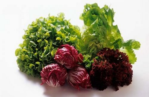 salatafej5.jpg