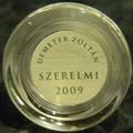 Demeter Zoltán vertikális a nappaliban II.