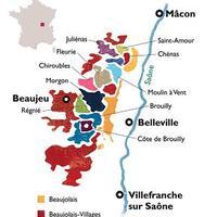 Beaujolais reneszánsza, avagy élet az újboron túl