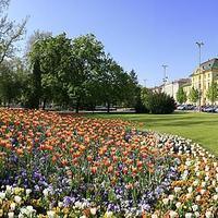 Szeged, a bor fővárosa