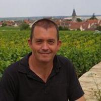Pannon Bormustra 2012: integrálódni a világ borkultúrájába