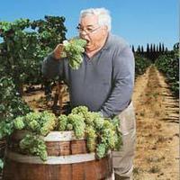 Halál a szőlőben