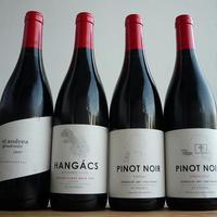 Pinot páros(ok) V.