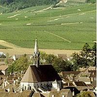 Chardonnay-hullámvasút