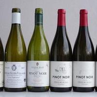 Pinot páros(ok) VIII.