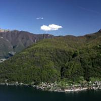 Brunello di Monte San Giorgio