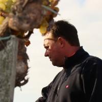 Az Év bora: Demeter Zoltán Veres Furmint 2009