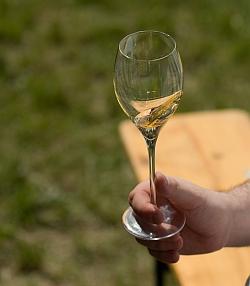 kéz ami a bort ringatja