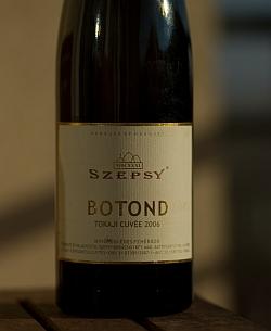 Szepsy Botond