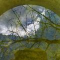 A Víz világnapján a kerti vízgyűjtésről