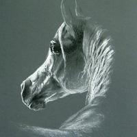 A második lovam