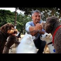 Emberképzés kutyákhoz