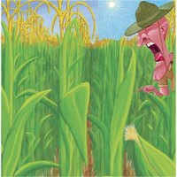 Mezőgazdasági csoda