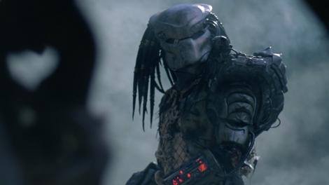 predator2.jpg