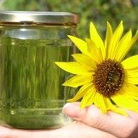 Kiszivárgott EU-jelentés ekézi a bioüzemanyagokat