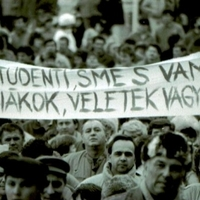Kellemes esti sétával az oktatáspolitika ellen