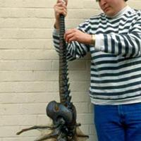 Borzasztó élőlényt találtak... - Kamu