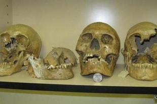 Óriások koponyái